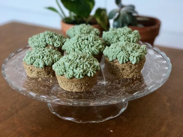 Qualitarian approved SpiruMint Cupcakes - gluten free, vegan, flourless